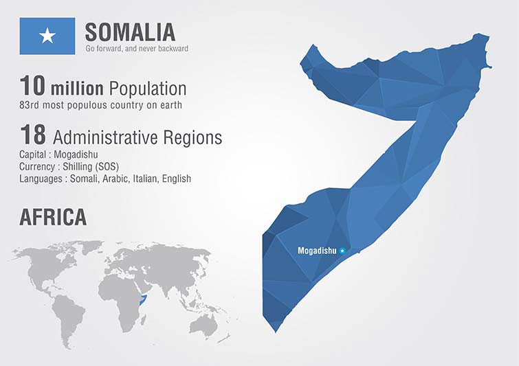 a history of the country somalia in eastern africa Historically, somalia, and greater 'somaliland', has been an integral node in the regional trade and commercial activity of the arabian sea, the gulf countries and eastern africa internally, somali social and political organization has been characterized by nomadic pastoralism and.