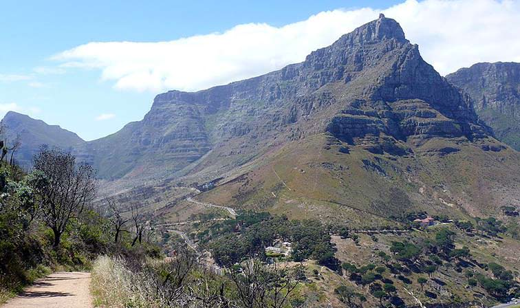 Table-Mountain-National-Park-South-Africa